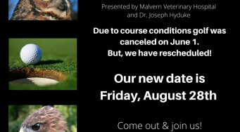 16th Annual Bird of Prey Golf Classic-RESCHEDULED!
