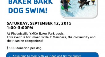 Baker Bark Dog Swim